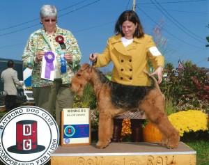 2013 Winner's Dog - Hatboro 1